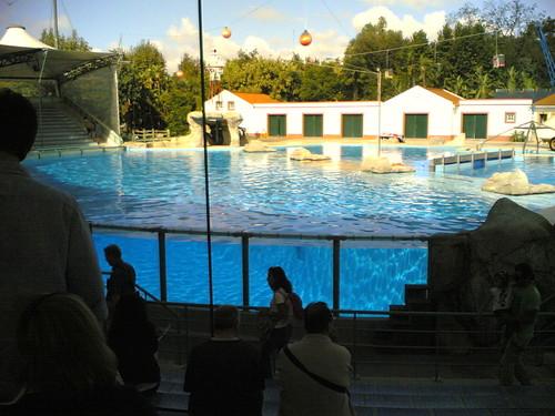 Tanque dos golfinhos