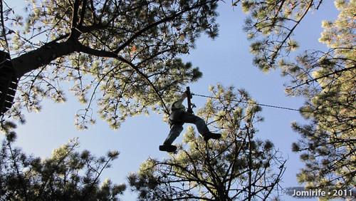 Parque Aventura: Slide agarrado a um tronco