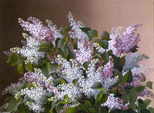 Raoul-De-Longpre-Spray-of-Lilacs.jpg