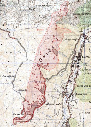 mapa das mimosas
