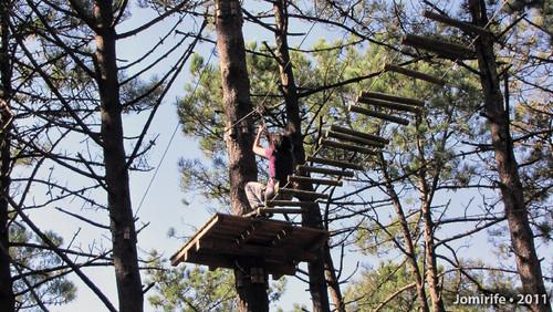Parque Aventura: Ponte de troncos