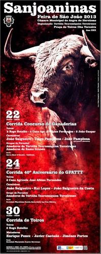 O cartaz da Feira de São João 2013...
