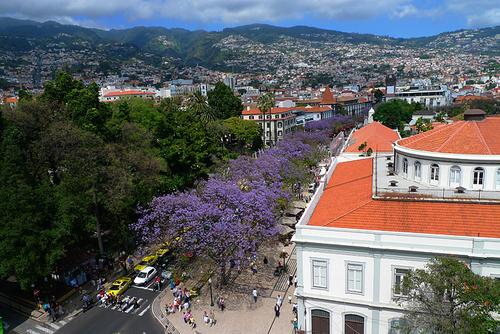 Madeira4.png
