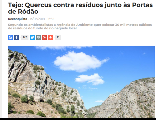 quercus 3.png