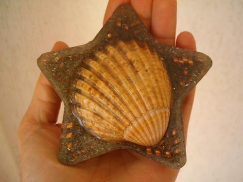 orgonite em forma de estrela com concha embutida