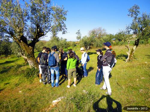 Geocahing: Serra de Sicó - Cache encontrada