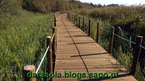 Passadico_Esmoriz_16.jpg