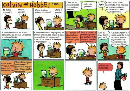 Crise - Calvin and Hobbes.jpg