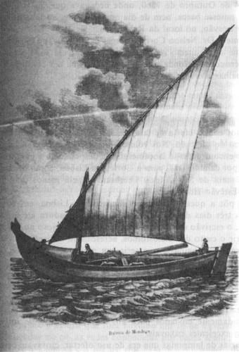 Barco de pesca do baixo Mondego.jpg