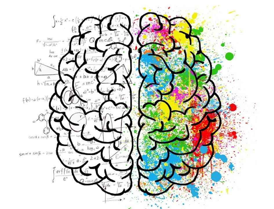 brain-2062057_1280.jpg