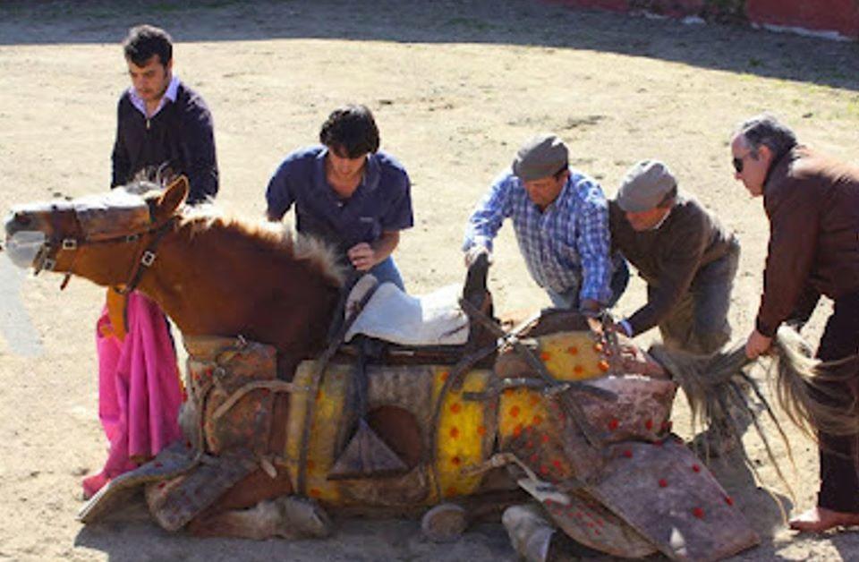 Cavalo torturado.jpg