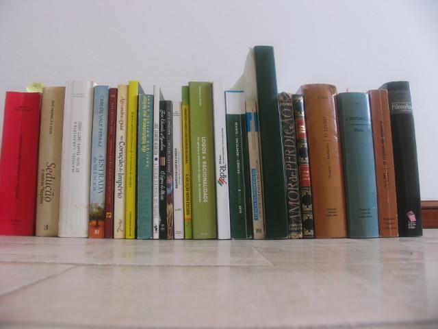dia do livro meus 001.JPG