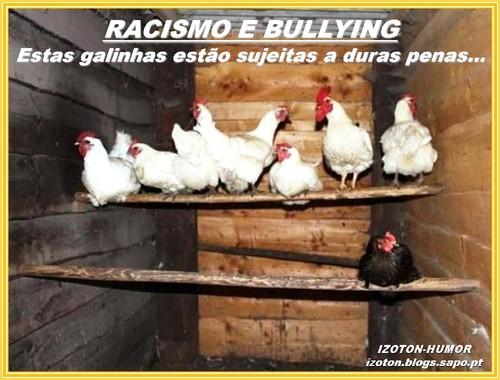 GALINHEIRO..jpg