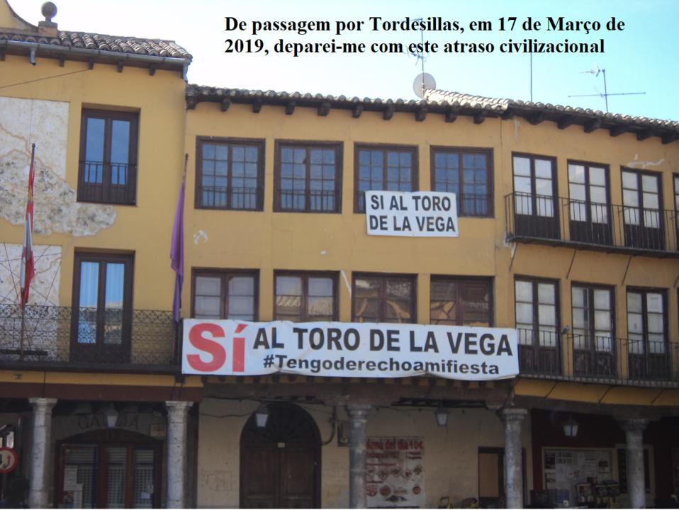 c051fcba7 Qual não foi o meu espanto, quando, chegada a Portugal, no meu e-mail tenho  uma mensagem da AnimaNaturalis, uma organização internacional de Direitos  dos ...