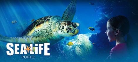 sea-life-470-214.jpg