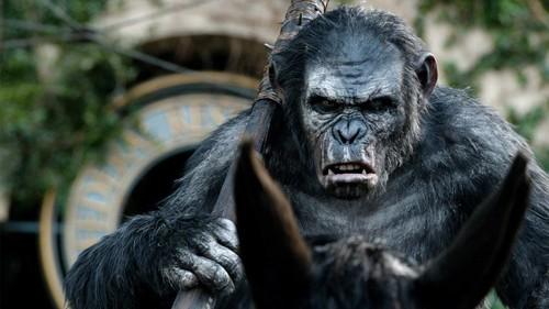 koba-dawn-planet-apes.jpg