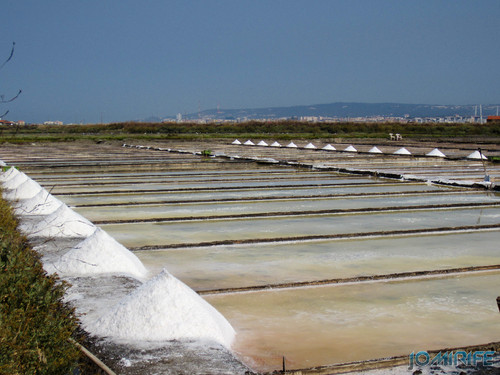 Salinas da Figueira da Foz (8) Montes de sal [en] Salt fields of Figueira da Foz in Portugal