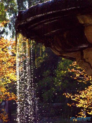Jardim Botânico da Universidade de Coimbra (7) Fonte [en] Botanical Garden of the University of Coimbra - Fountain