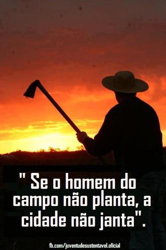 Frases Do Facebook Se O Homem Do Campo Não Planta A Cidade Não