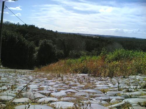 Abrunheira: Parque de Merendas: Caminho