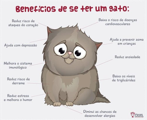 beneficiosdesergato