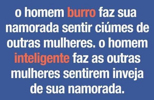 Frases Do Facebook O Homem Burro Pontos De Vista