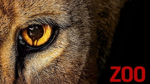 Zoo-header.jpg