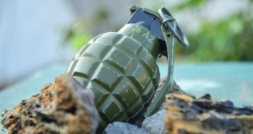 granadas 1.jpg