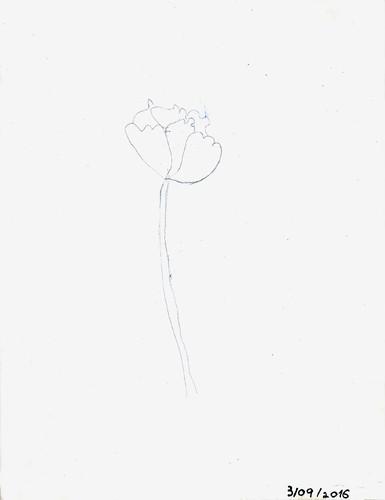 desenho1.jpg