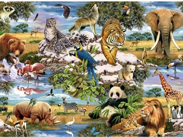 MUNDO ANIMAL.jpg