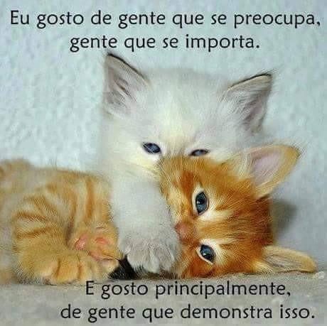 FB_IMG_1488634957690.jpg