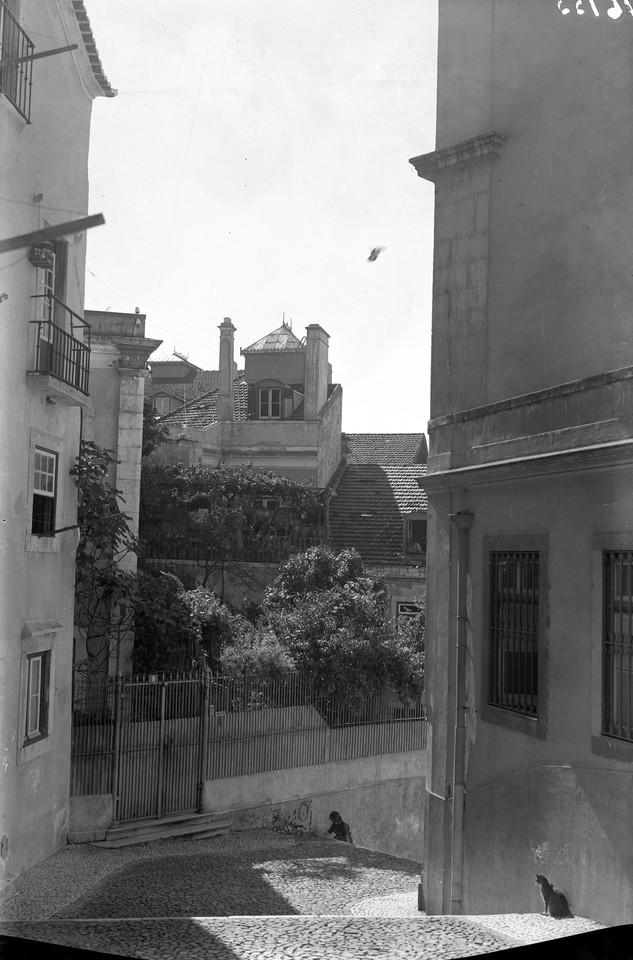 Escadinhas de São Crispim, ant. 1952, foto de Edu