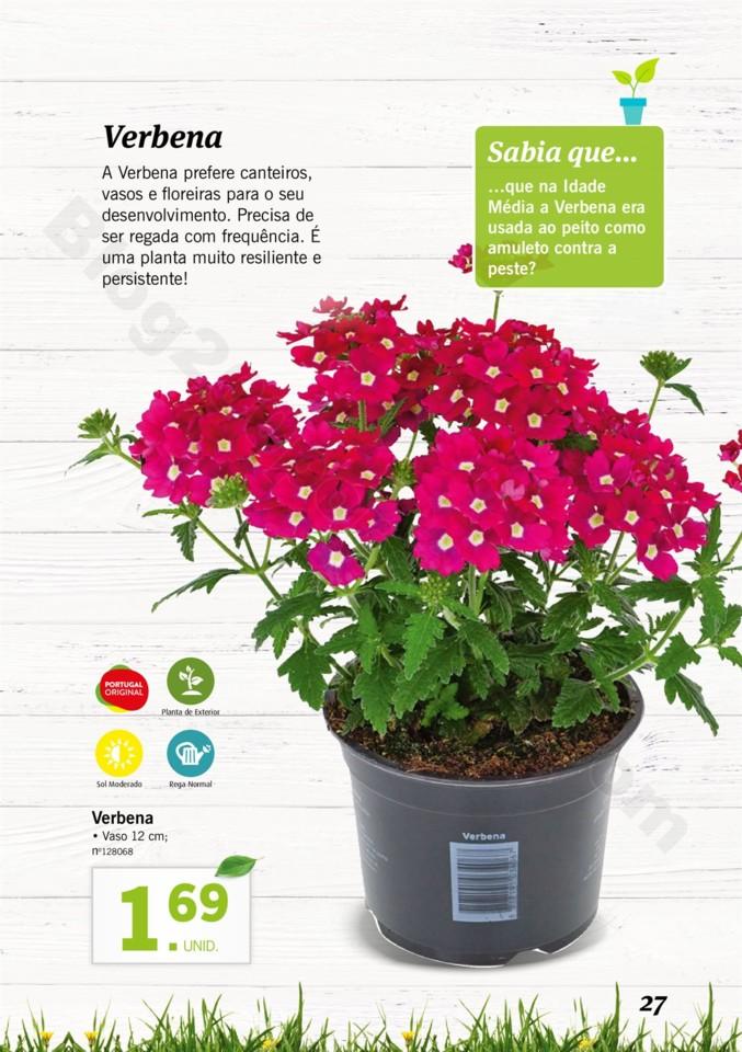 Mercado-de-Plantas-A-partir-de-04.04-01_026.jpg