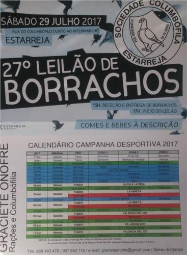 Leilão Estarreja.jpg