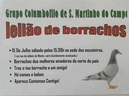 Leilão S.Martinho Campo.jpg
