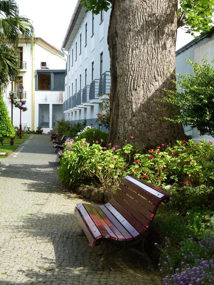 Angra - Jardim Duque da Terceira (36).JPG
