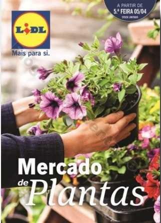 Promoções-Descontos-30382.jpg