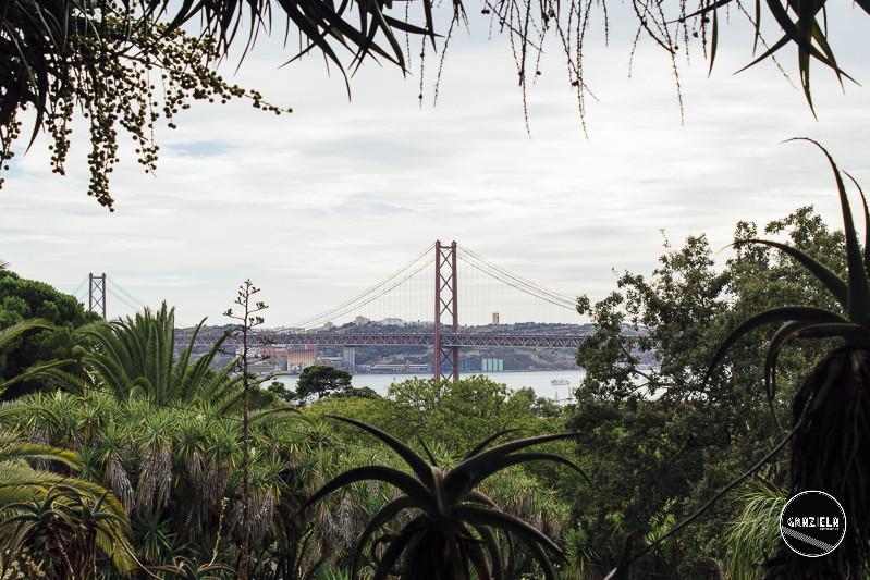 Tapada_da_Ajuda_Lisboa-001528.jpg
