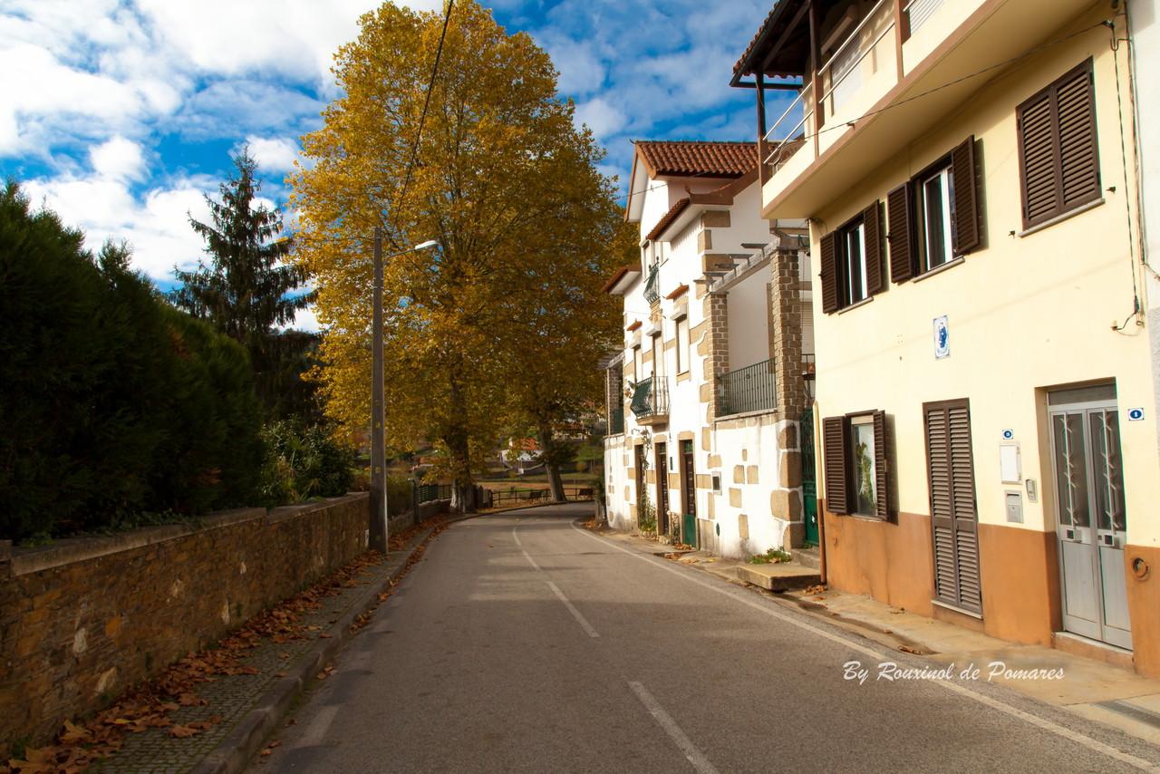 Outono em Pomares (11).JPG