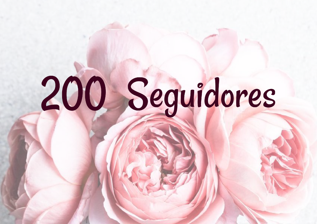 200 seguidores.png