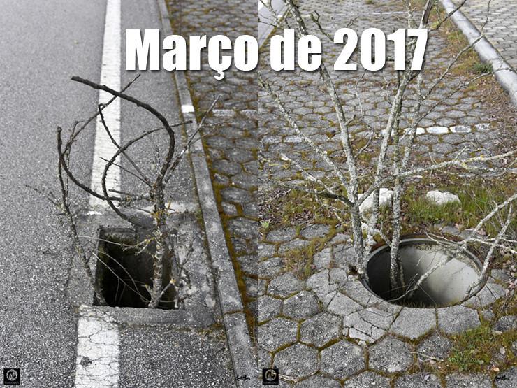 02 Março 2017 - 740.jpg
