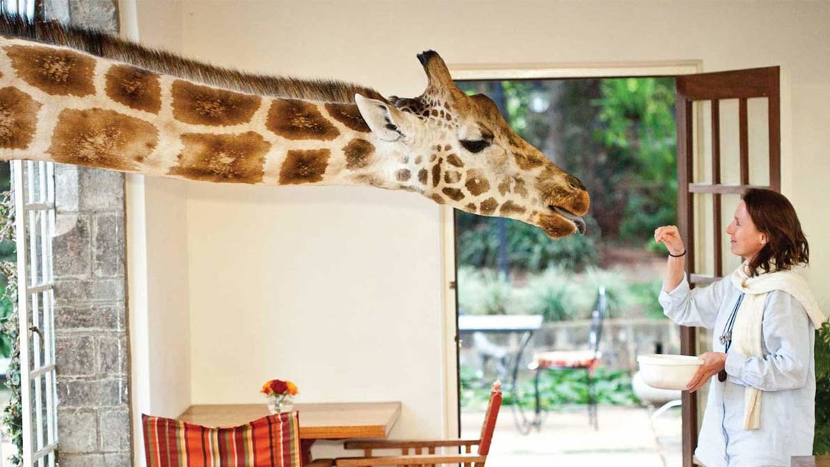 Feeding-Time-at-Giraffe-Manor.jpg