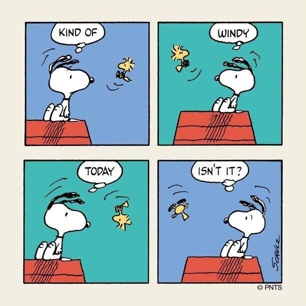 f07babd7c6f8f2541fa6a0de6c5309e6--peanuts-cartoon-
