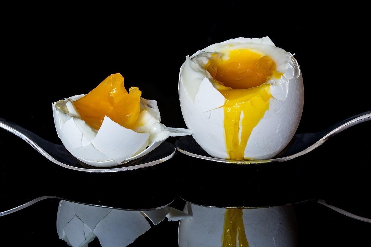egg-2161877_1280.jpg