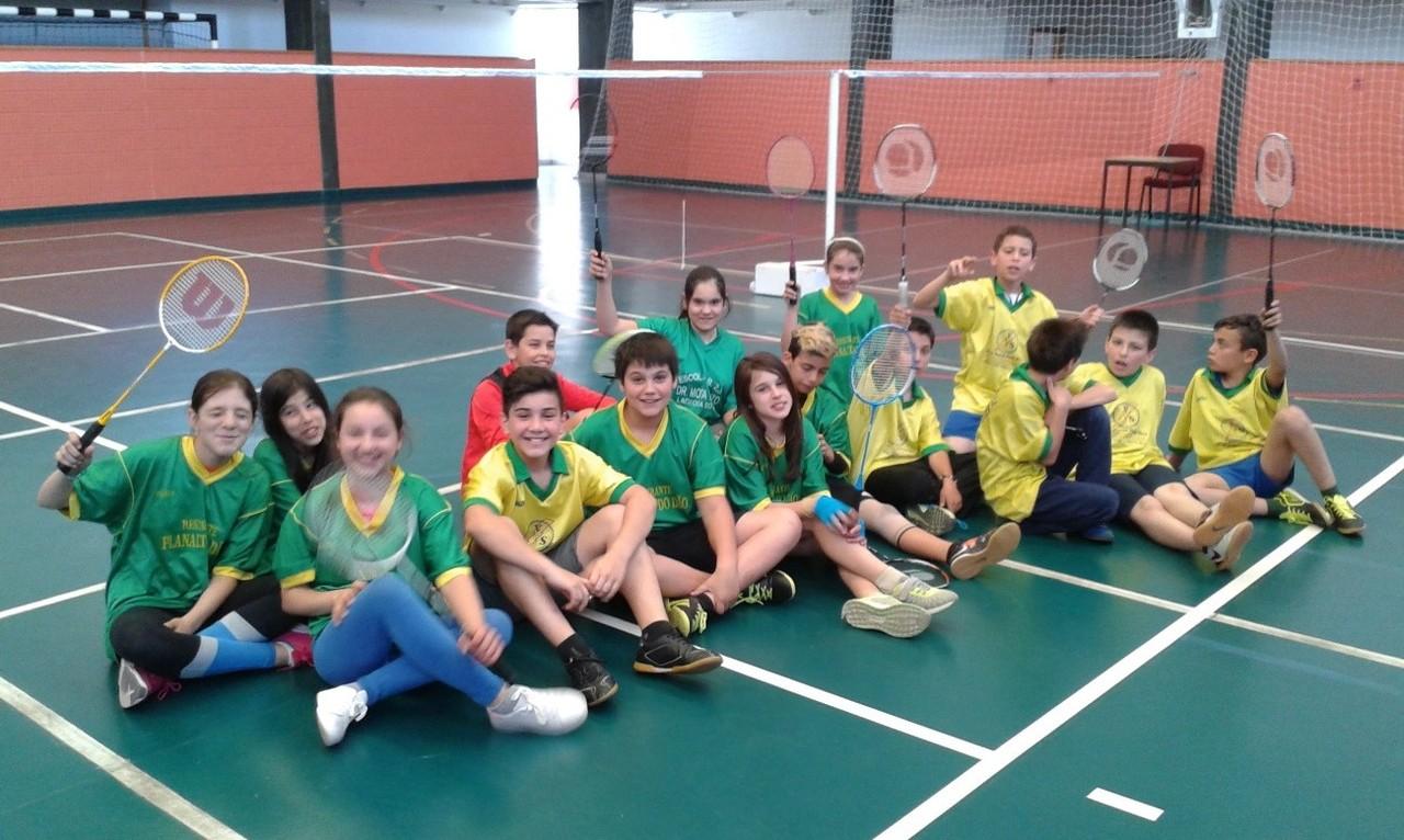 Badminton Mota pinto.jpg