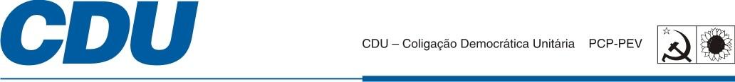 CDU Linha Voto 2015