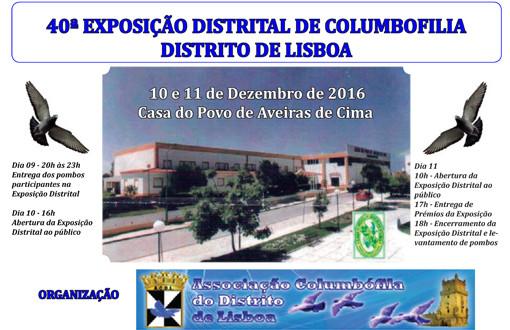 Expo Rainha.jpg