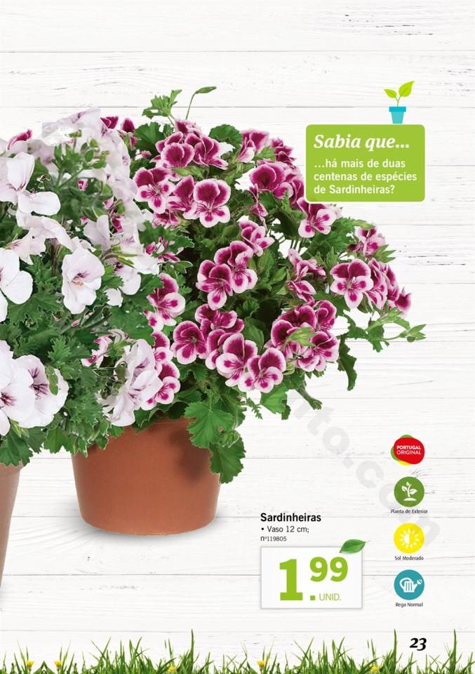 Mercado-de-Plantas-A-partir-de-04.04-01_022.jpg