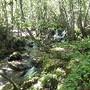 o meu pequeno rio