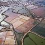 Agricultura e Marés